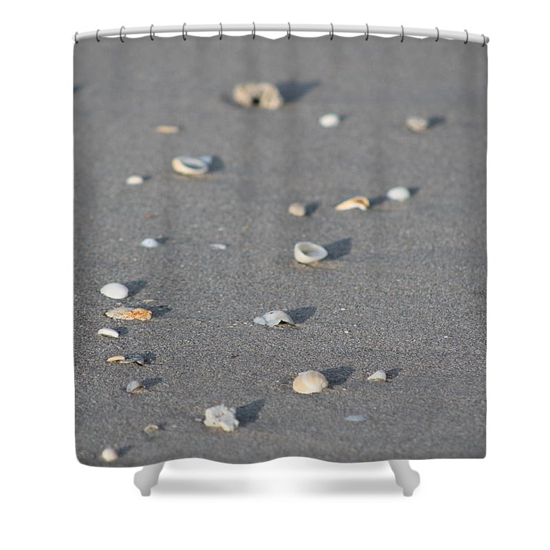 Beach Shower Curtain featuring the photograph Shells On A Beach by Catie Canetti