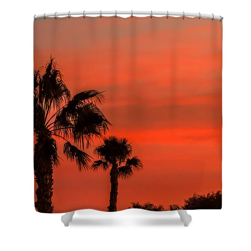 Sunrise Shower Curtain featuring the photograph Silhouetted Palm Trees by Robert Bales