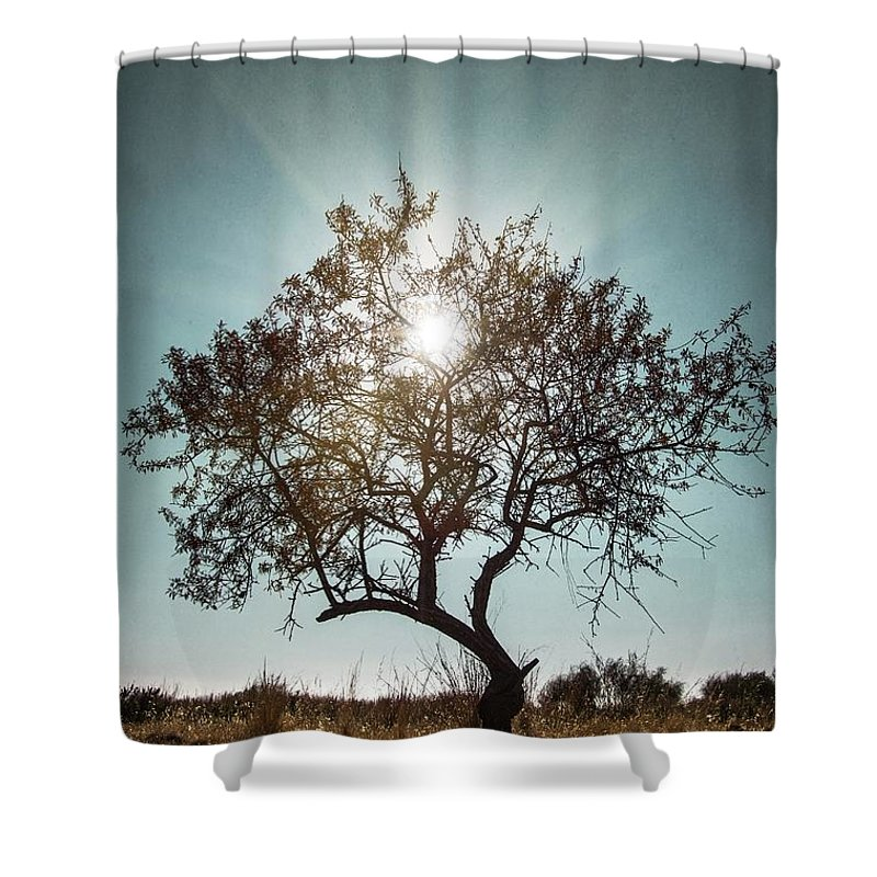 Dark Shower Curtain Featuring The Photograph Single Tree By Carlos Caetano