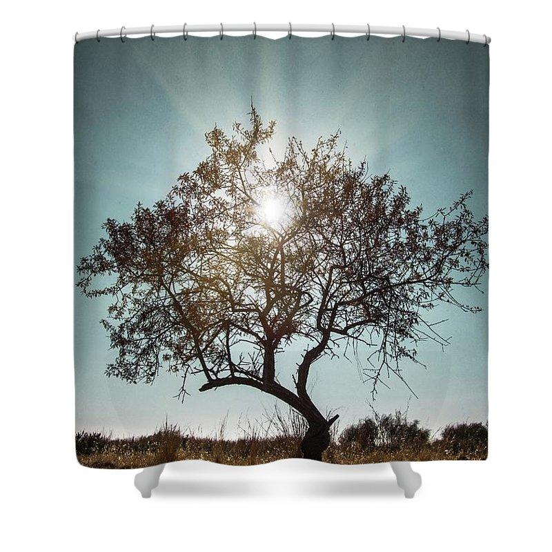 Dark Shower Curtain Featuring The Photograph Single Tree By Carlos Caetano