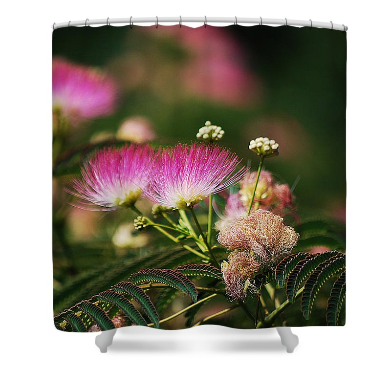Becky Furgason Shower Curtain featuring the photograph #elevatormusic by Becky Furgason