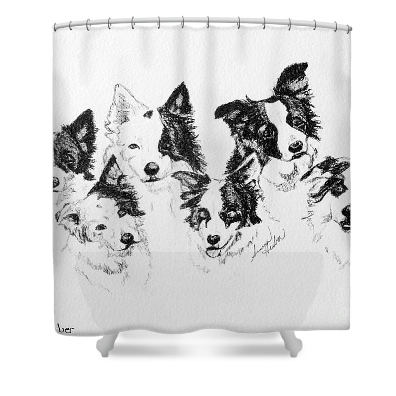 Animal Shower Curtain featuring the drawing Six Packed by Susan Herber