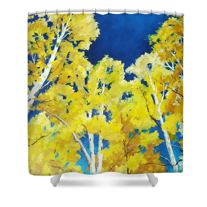 Sky Shower Curtain featuring the painting Skyward by Richard T Pranke