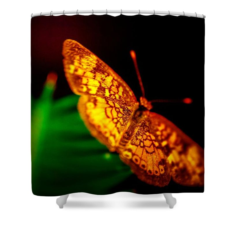 Shower Curtain featuring the photograph Small Butterfly by Gerald Kloss