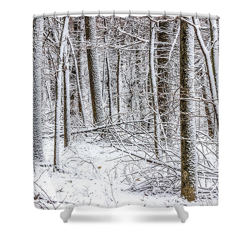 Forest Shower Curtain featuring the photograph Snow Covered Forest 4 by Pete Hendley