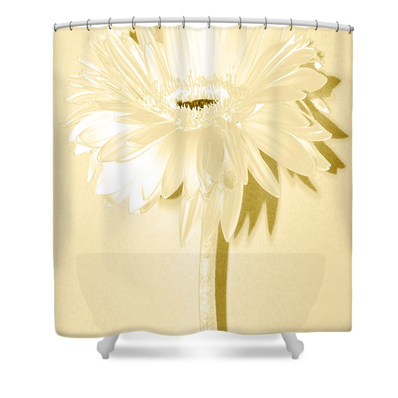 Original Photo Shower Curtain featuring the photograph Snow Flake Zinnia by Sherry Allen