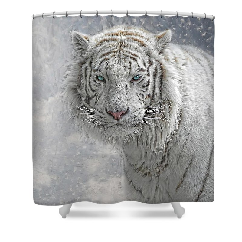 Cat Shower Curtain featuring the photograph Snow White by Joachim G Pinkawa