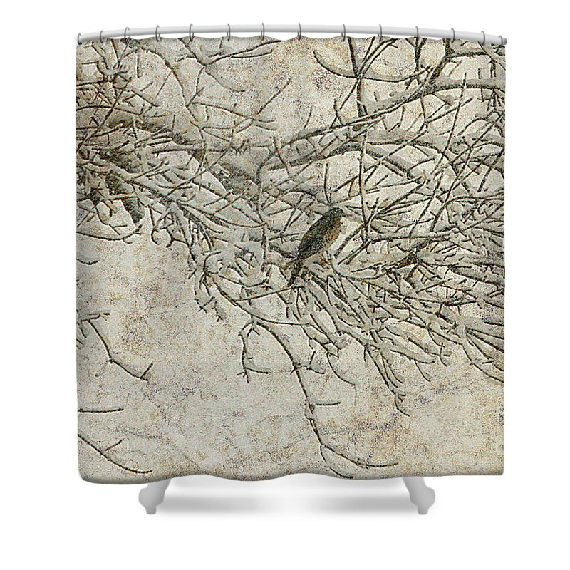 Snow Storm Shower Curtain featuring the photograph Snowy Bird by Elizabeth Winter