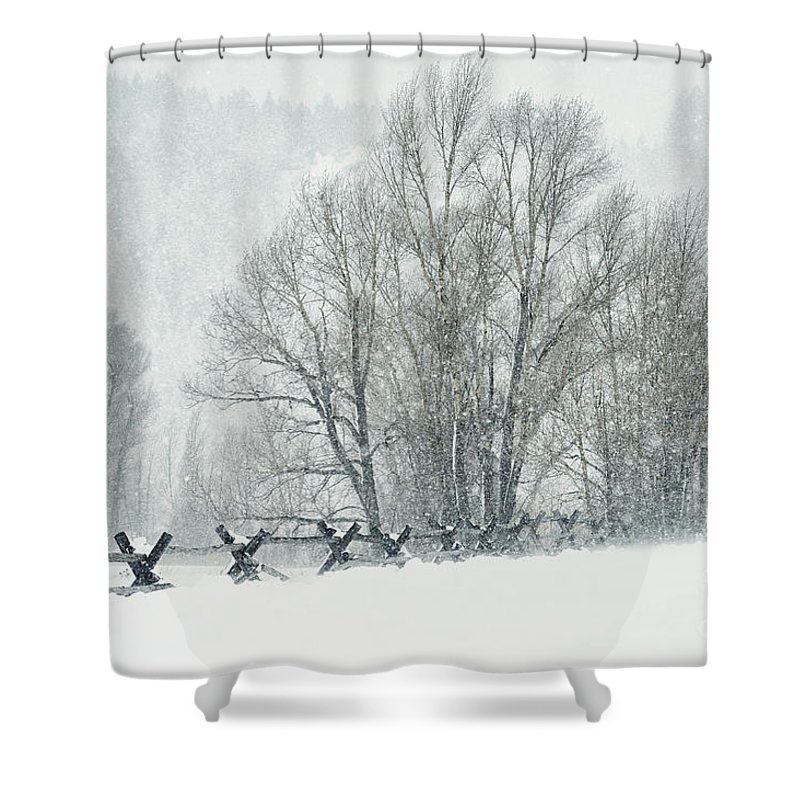 Grand Teton Shower Curtain featuring the photograph Snowy Day In The Tetons by Sandra Bronstein