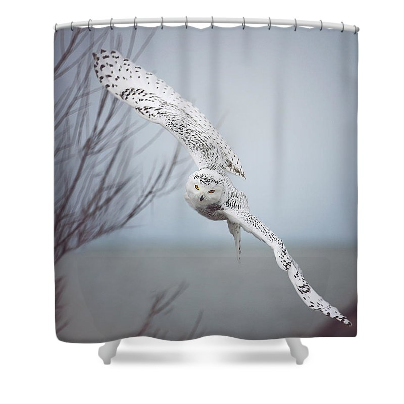 Snowy Shower Curtains
