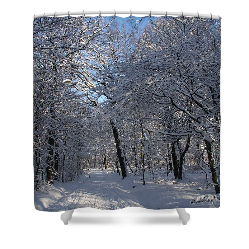 Forest Shower Curtain featuring the photograph Snowy Trail by Christiane Schulze Art And Photography