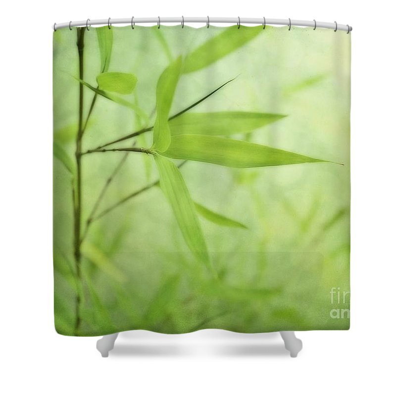 Green Shower Curtain featuring the photograph Soft Bamboo by Priska Wettstein