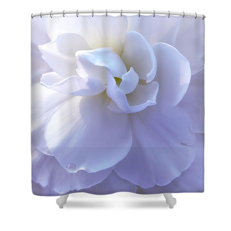 Begonia Shower Curtain featuring the photograph Soft Lavender Begonia Flower by Jennie Marie Schell
