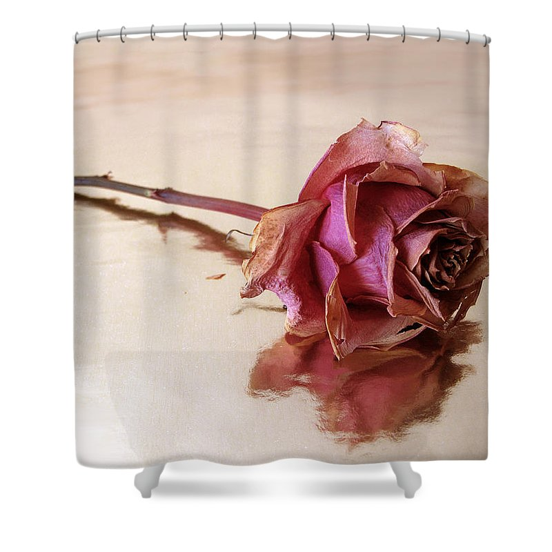 Flower Shower Curtain featuring the photograph Solitaire by Jessica Jenney