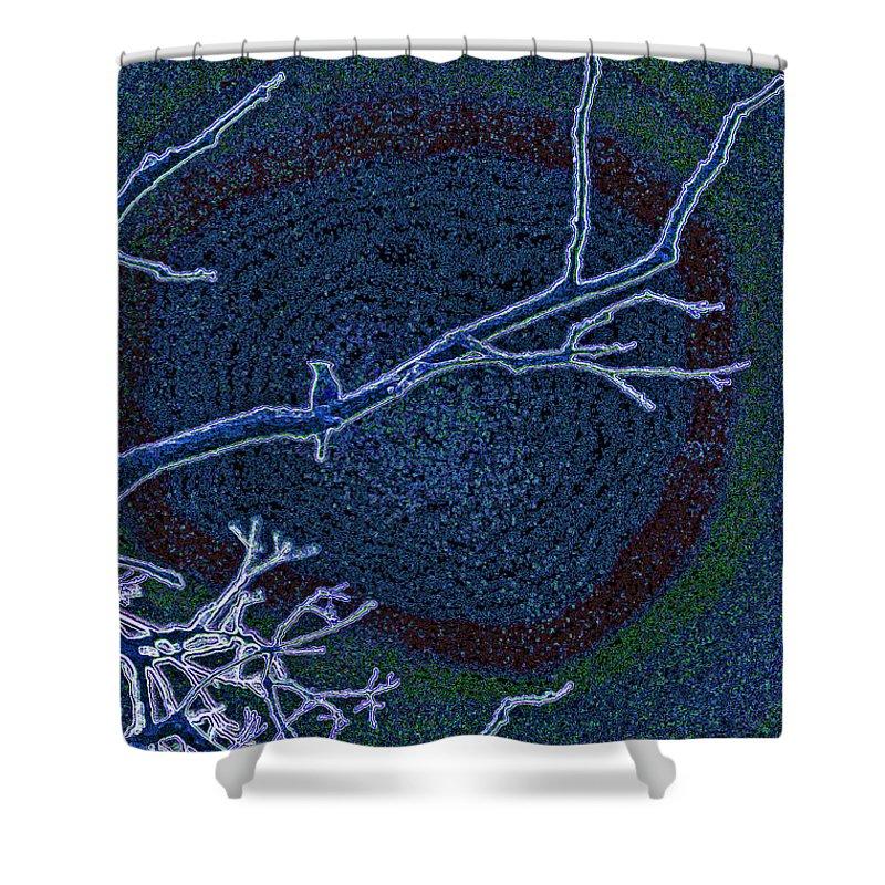 First Star Art By Jrr Shower Curtain featuring the photograph Songbird Blue by First Star Art