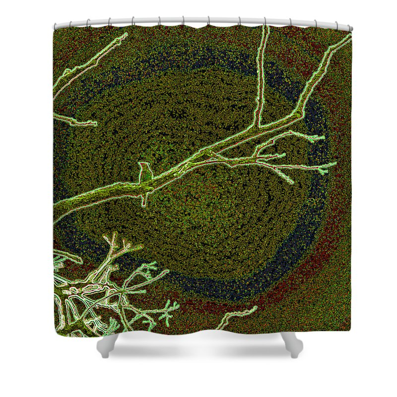 First Star Art By Jrr Shower Curtain featuring the photograph Songbird Green by First Star Art