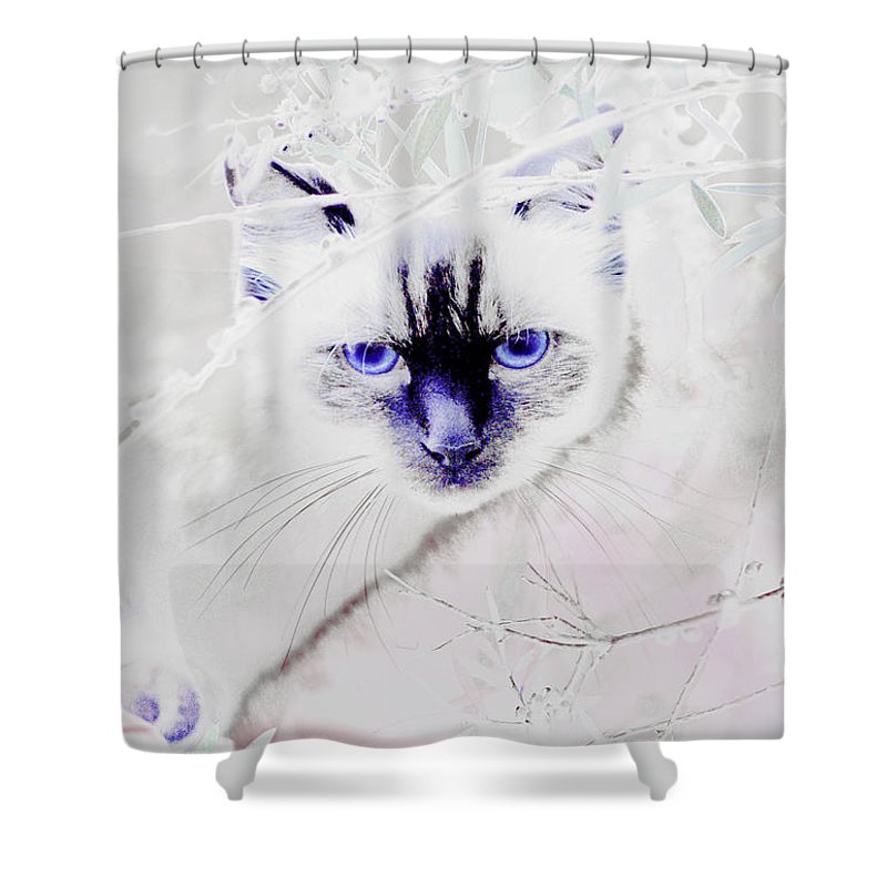 Animals Shower Curtain featuring the photograph Spellbound by Holly Kempe