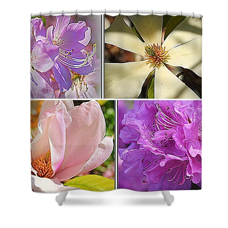 Spring Flowers In Full Bloom Shower Curtain featuring the photograph Springtime Blossoms by Dora Sofia Caputo Photographic Design and Fine Art