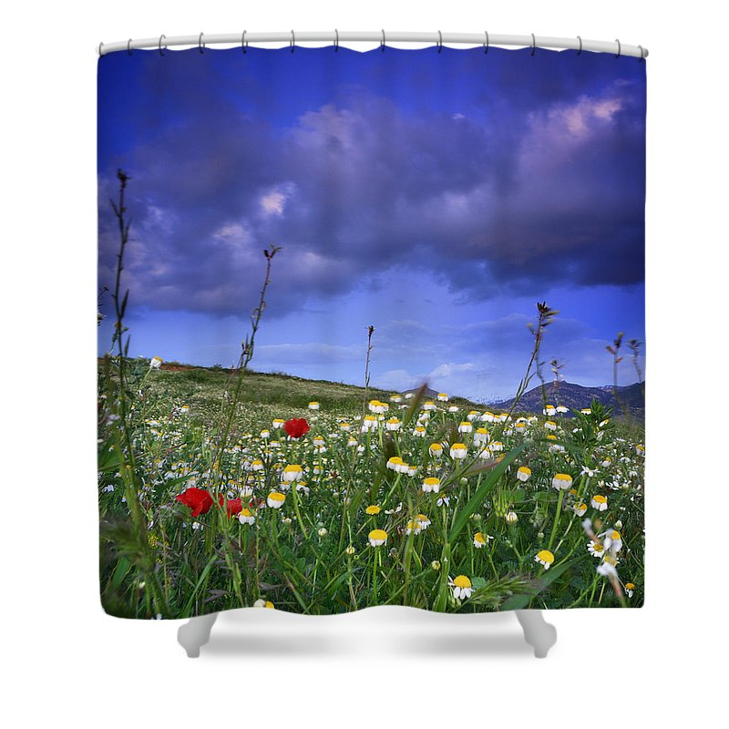 Landscape Shower Curtain featuring the photograph Spring Sunset Windy Days by Guido Montanes Castillo
