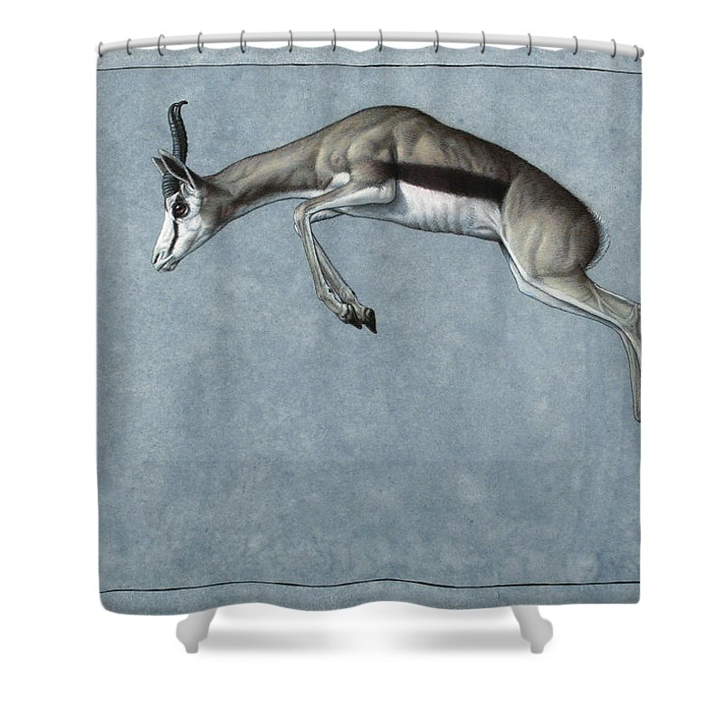 Springbok Shower Curtain featuring the painting Springbok by James W Johnson
