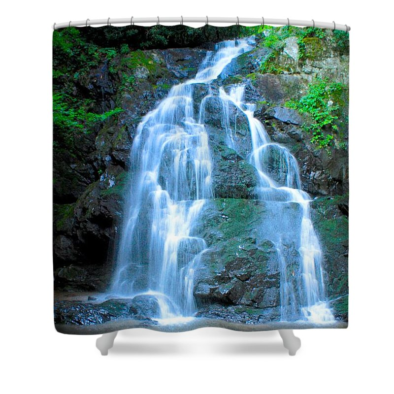 Smoky Mountains Shower Curtain featuring the photograph Spruce Flats Orchestra by Nunweiler Photography