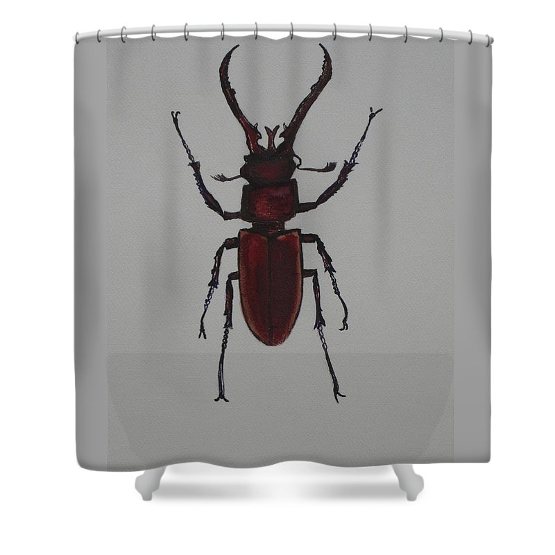 Bug Shower Curtain featuring the painting Stag Beetle by Jeffrey Oleniacz