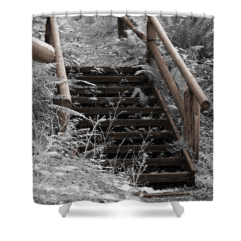 Campground Shower Curtain featuring the photograph Stairway Home by Jeanette C Landstrom