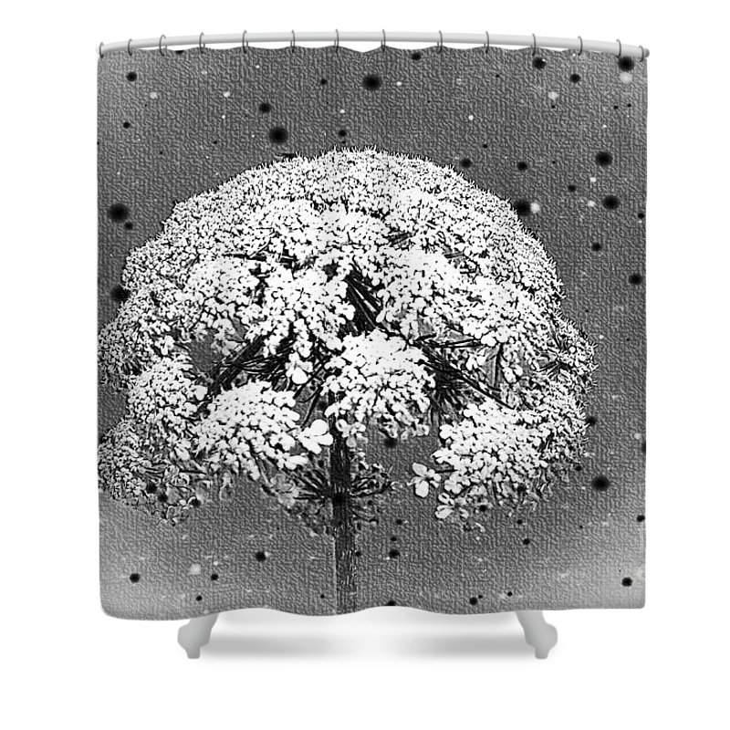 Flowers Shower Curtain featuring the photograph Standing Alone by Ben Yassa