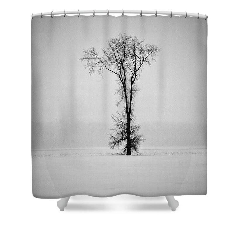 Elm Tree Shower Curtain featuring the photograph Standing Strong by Joshua McCullough