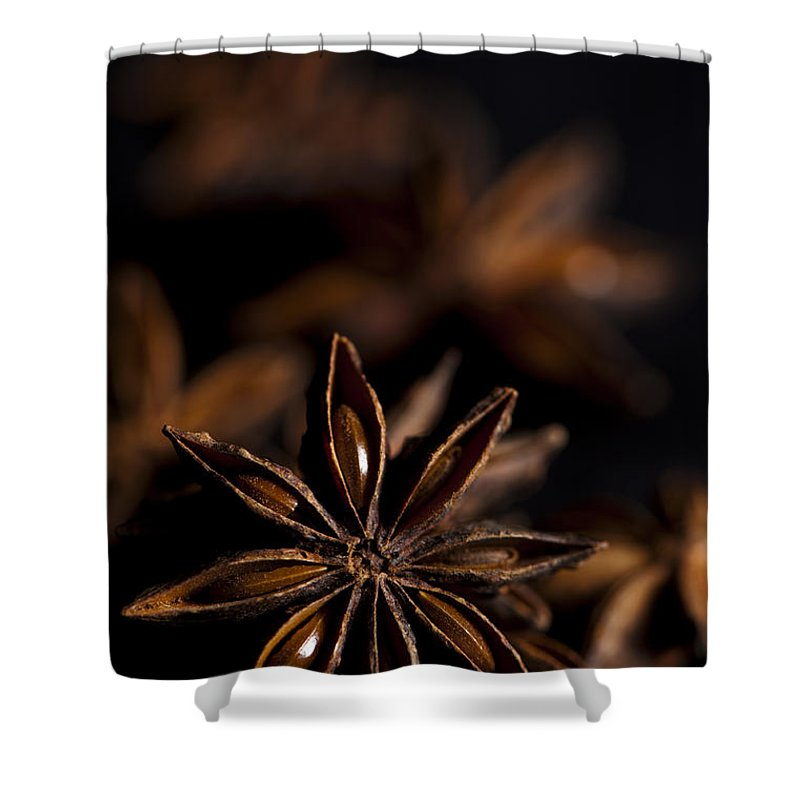 Anise Shower Curtain featuring the photograph Star Anise Study by Anne Gilbert