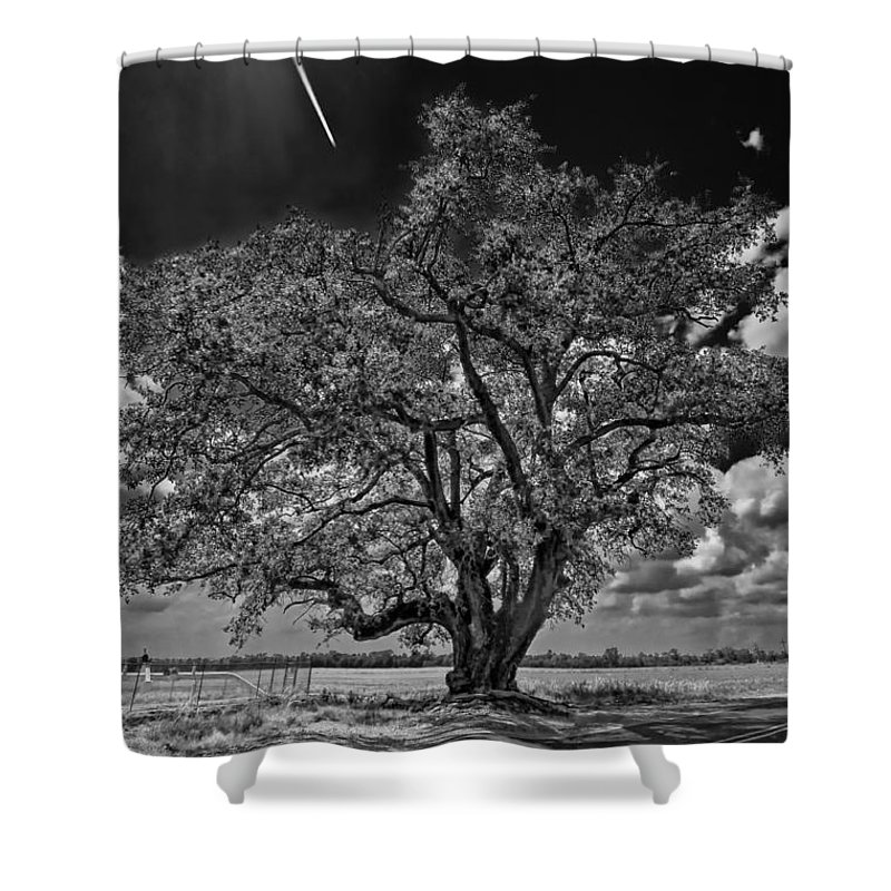 New Orleans Shower Curtain featuring the photograph Stardom Bw by Steve Harrington