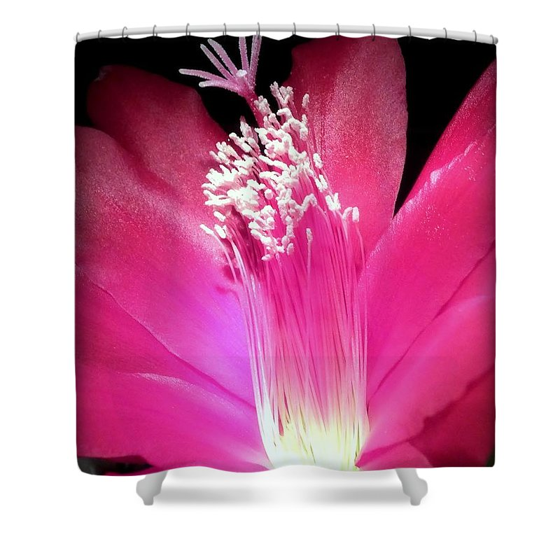 Hot Pink Shower Curtain featuring the photograph Stardust by Karen Wiles