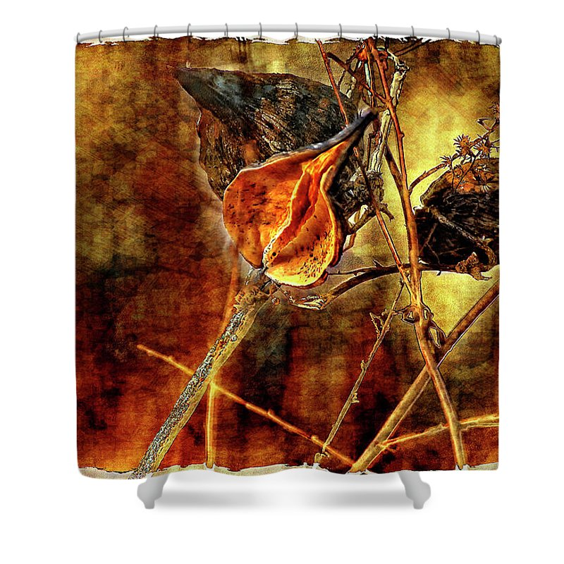 Weeds Shower Curtain featuring the photograph Still Life Study II by Steve Harrington