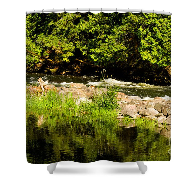 Gull Shower Curtain featuring the photograph Still Pool And Fast River by Les Palenik
