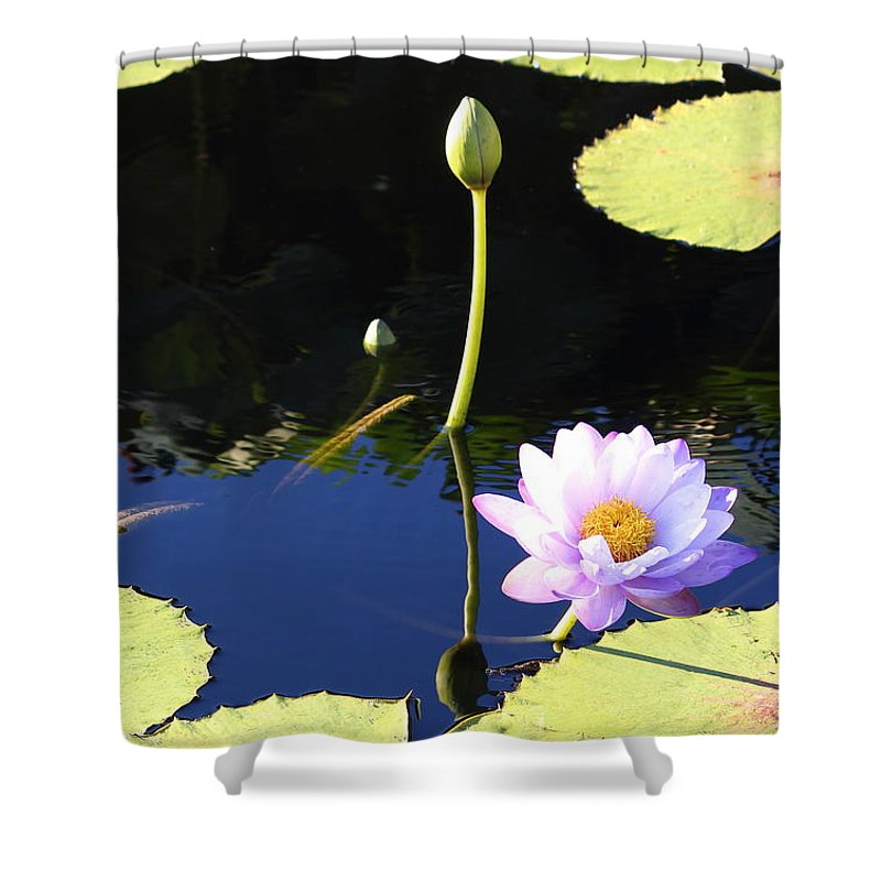 Water Shower Curtain featuring the photograph Stillness In Motion by Stephen Hobbs