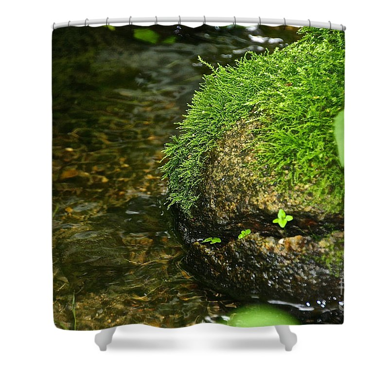 Outdoors Shower Curtain featuring the photograph Stone Mouth by Susan Herber