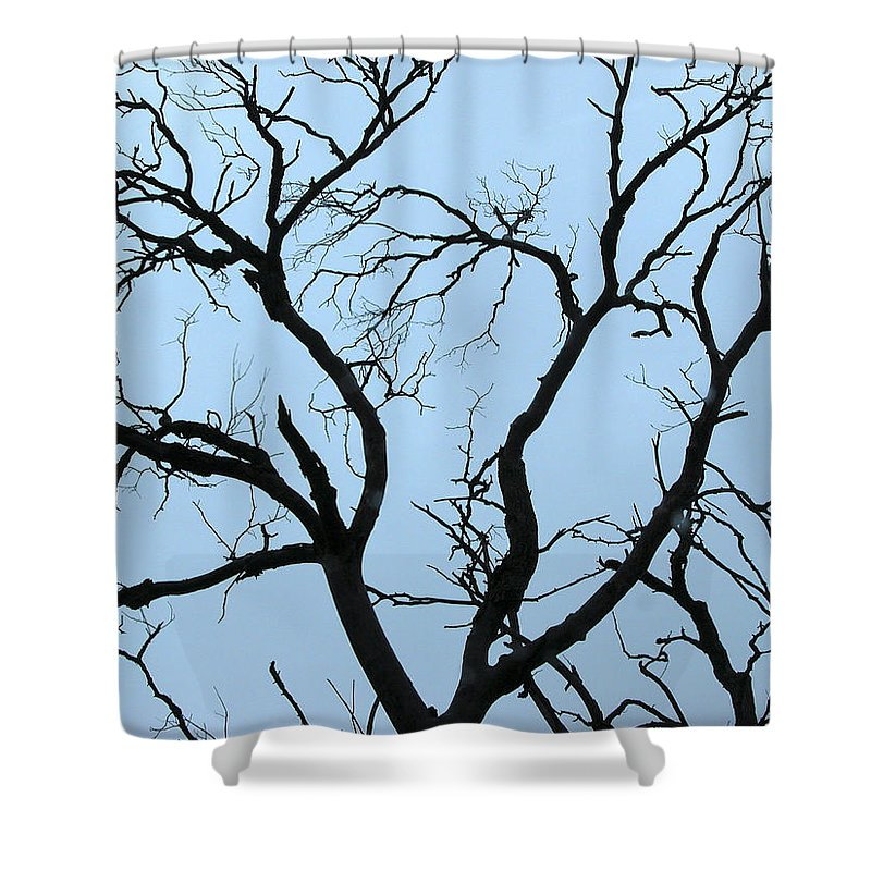Landscapes Shower Curtain featuring the photograph Stormy Trees by Guido Montanes Castillo