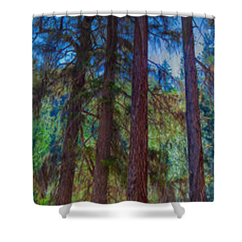Stretching Secrets Shower Curtain featuring the painting Stretching Secrets by Omaste Witkowski