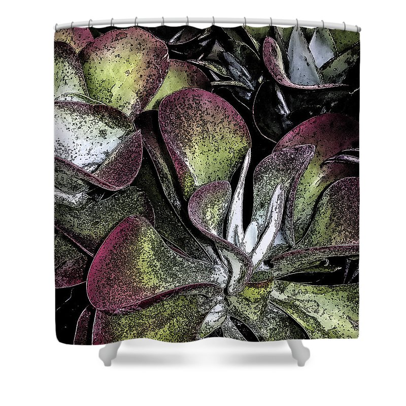 Succulent Shower Curtain featuring the photograph Succulent At Backbone Valley Nursery by Greg Reed