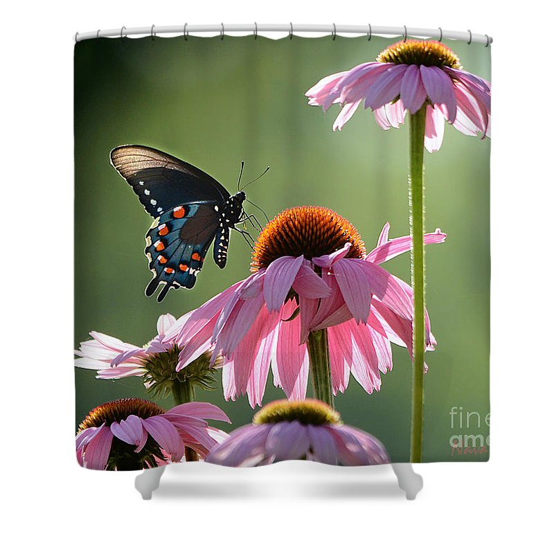 Floral Shower Curtain featuring the photograph Summer Morning Light by Nava Thompson