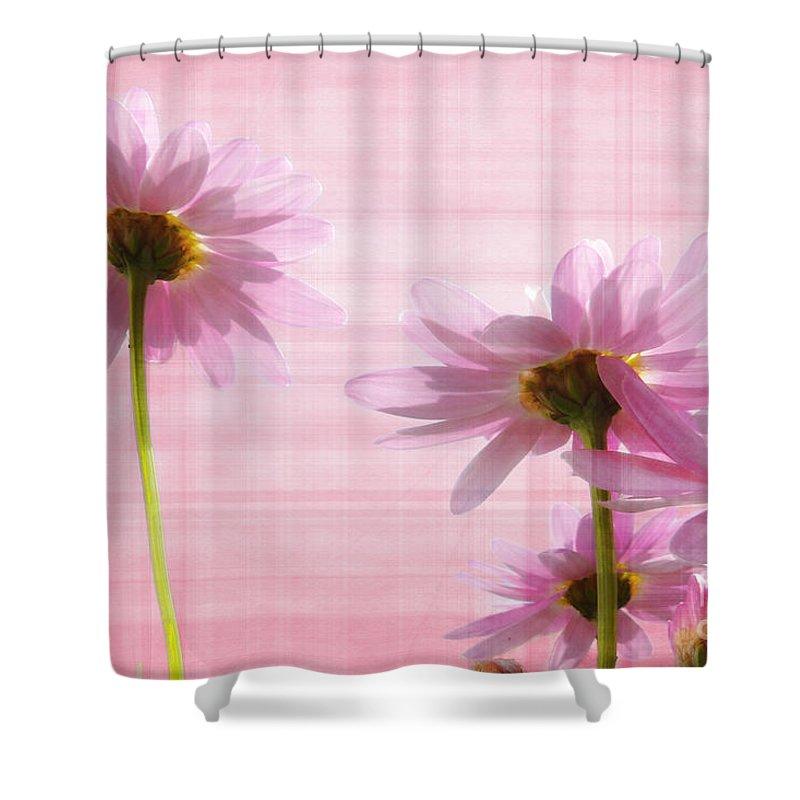 Peek-swint Shower Curtain featuring the photograph Summer Pinks by Susie Peek