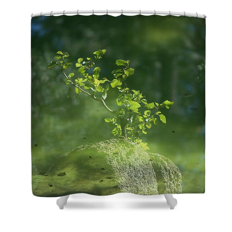 Reflections Shower Curtain featuring the photograph Summer Reflections by Sharon Elliott