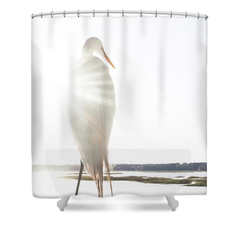 Standing Water Shower Curtain featuring the photograph Sun Perch by Copyright Dan Smith