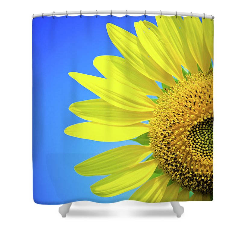 Clear Sky Shower Curtain featuring the photograph Sunflower Against Blue Sky by N. Umnajwannaphan