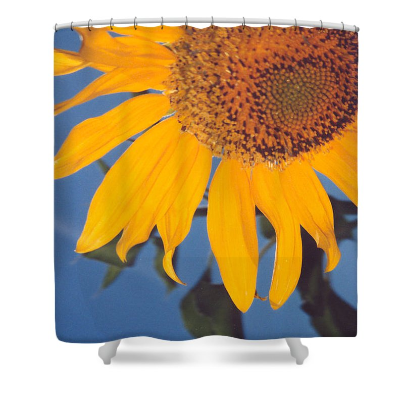 Flower Shower Curtain featuring the photograph Sunflower In The Corner by Heather Kirk
