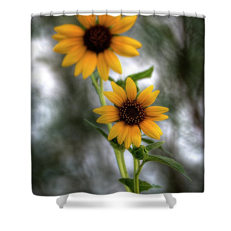 Yellow Sunflowers Shower Curtain featuring the photograph Sunflowers by Saija Lehtonen