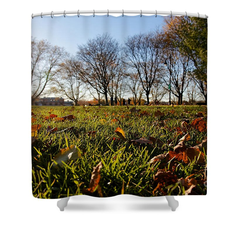 Autumn Shower Curtain featuring the photograph Sunlit Fall Lawn by Jannis Werner