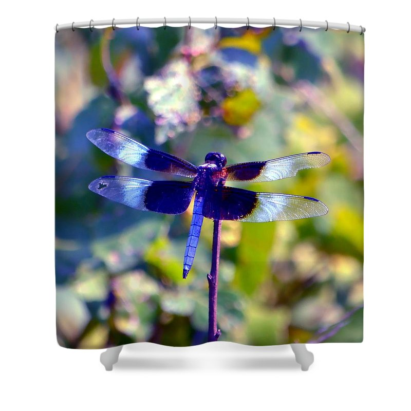 Dragonfly Shower Curtain featuring the photograph Sunning Dragonfly by Deena Stoddard