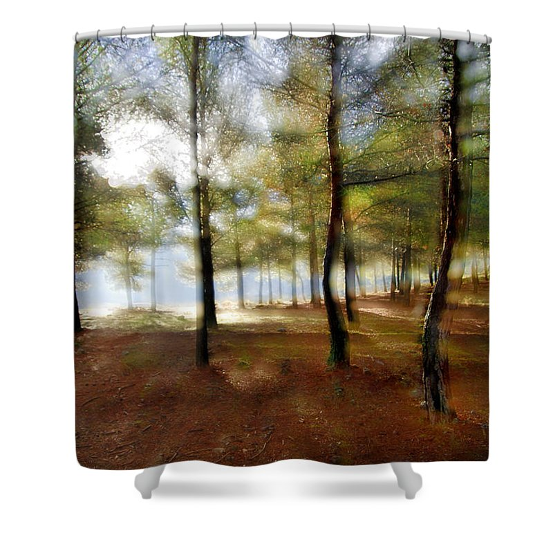 Landscape Shower Curtain featuring the photograph Sunrise At The Magic Forest by Guido Montanes Castillo