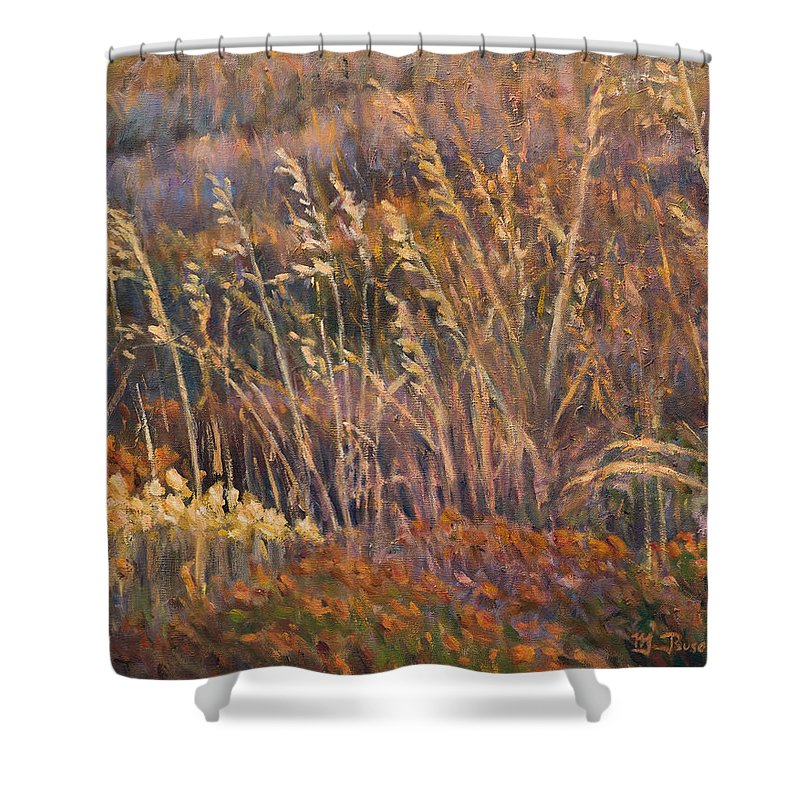 Grass Shower Curtain featuring the painting Sunrise reflections on dried grass by Marco Busoni